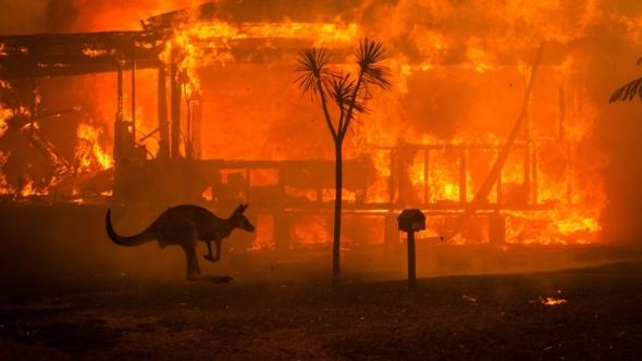 Australia_Bushfires.jpg